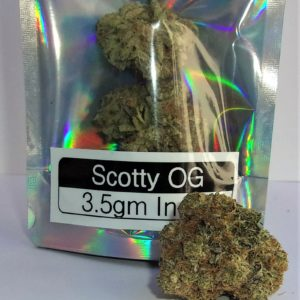 Scotty OG