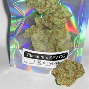 Platinum x SFV OG